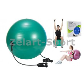 Мяч для фитнеса с эспандерами (фитбол) PS гладкий 65см FI-075T-65