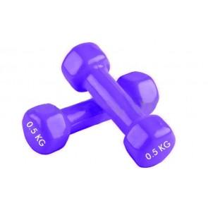 Гантели для фитнеса винил Радуга (2*0,5кг) TA-0001-0,5кг