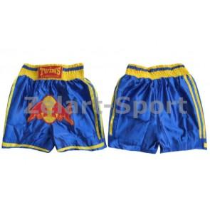 Трусы для тайского бокса CO-3874