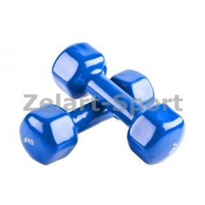 Гантели для фитнеса винил Радуга (2*4кг) TA-0001-4kg