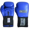 Боксерские перчатки для соревнований RING TO CAGE RCAFGUSA